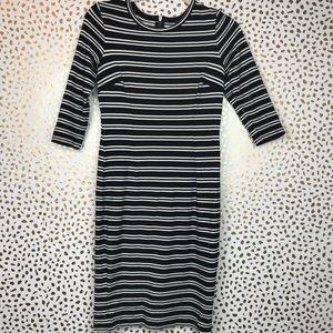 Ann Taylor | Petite Striped Black and White Dress